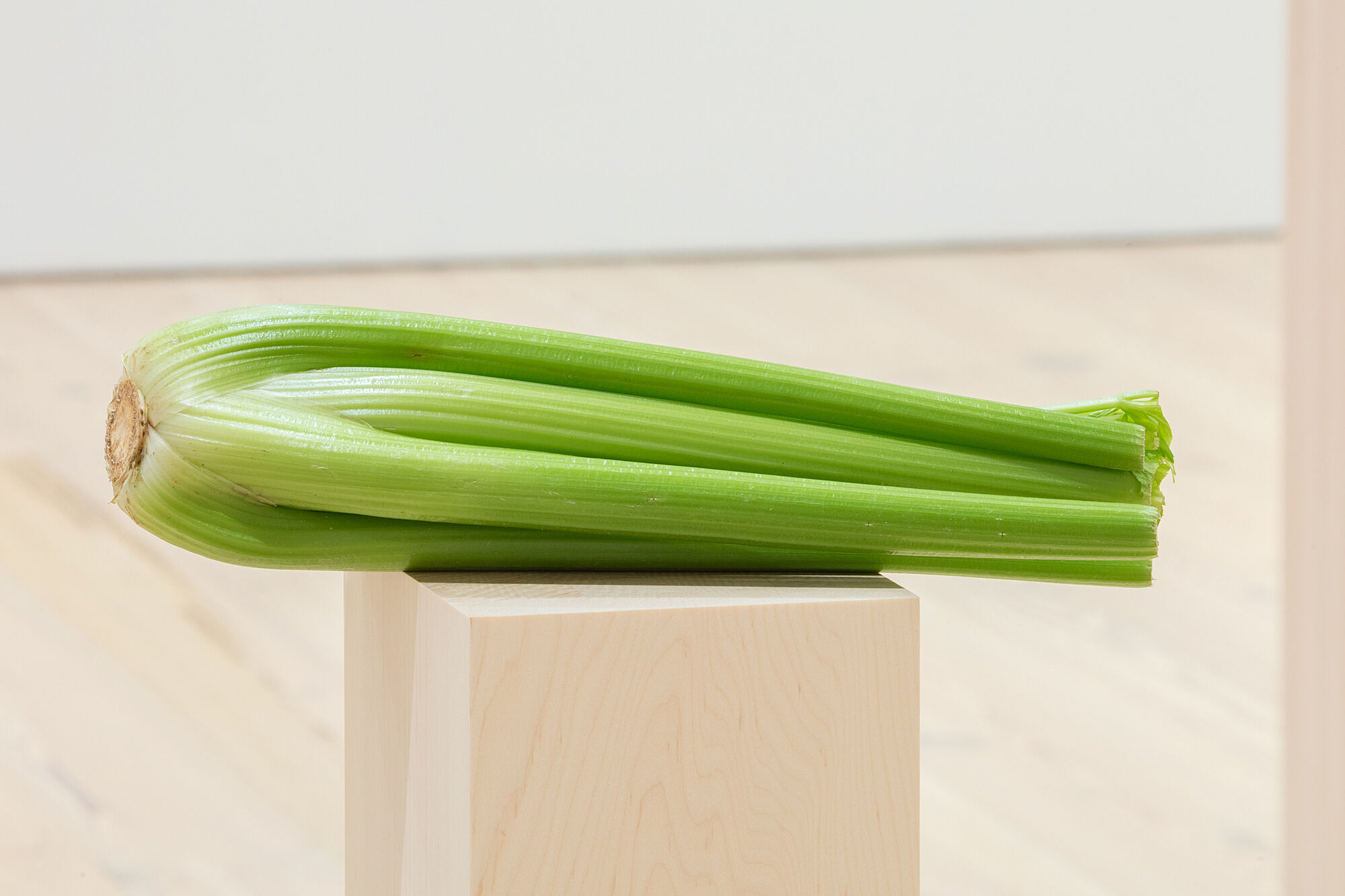 A photo of celery on a plinth.