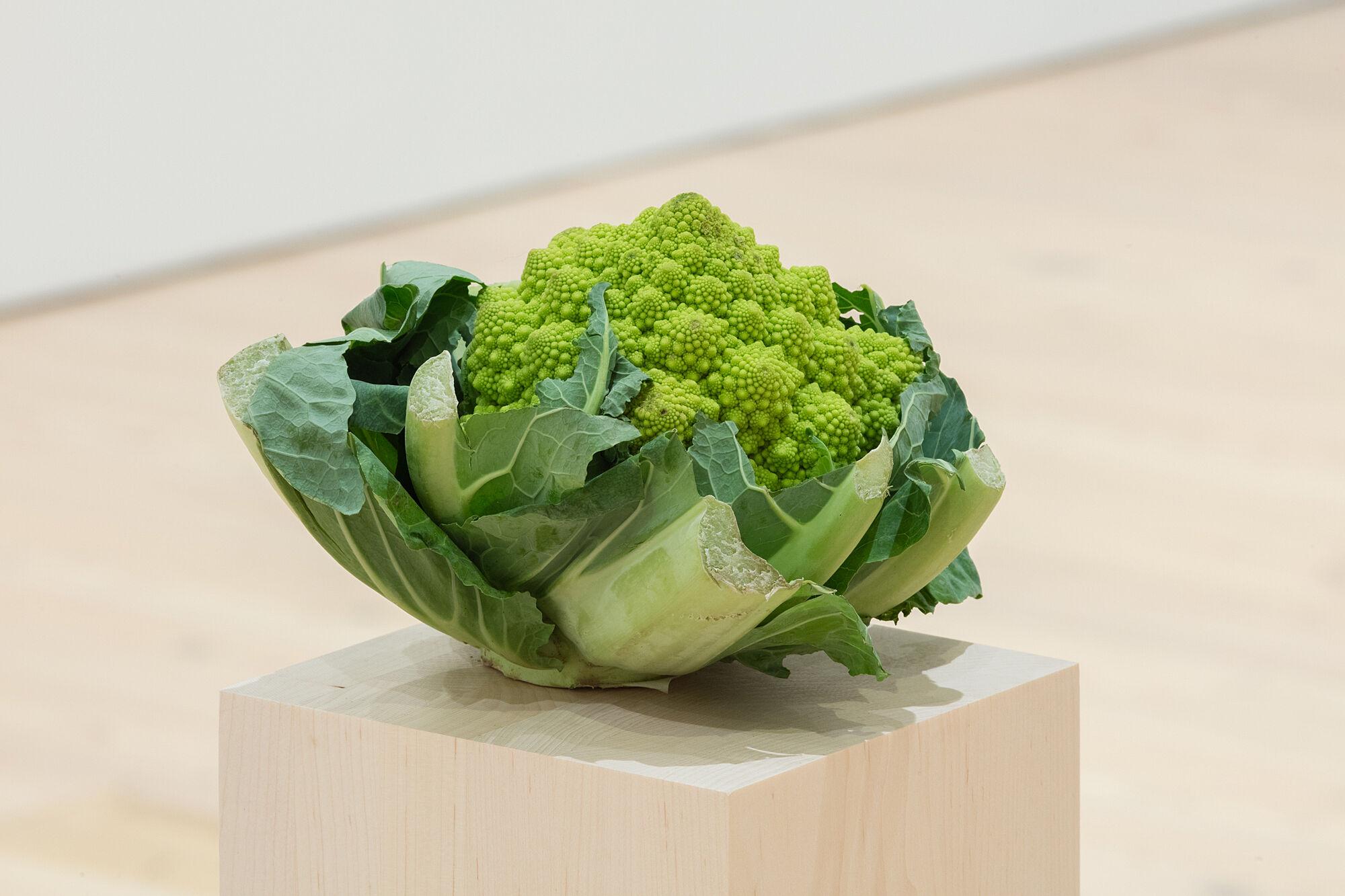 A photo of cauliflower on a plinth.