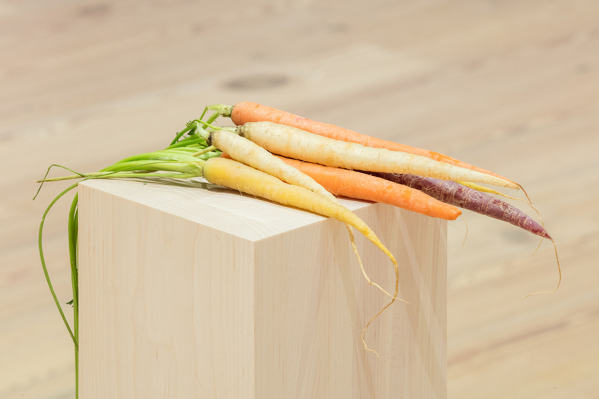 A photo of a bunch of carrots on a plinth.